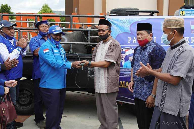 Demokrat Papua Sumbang Hewan Kurban