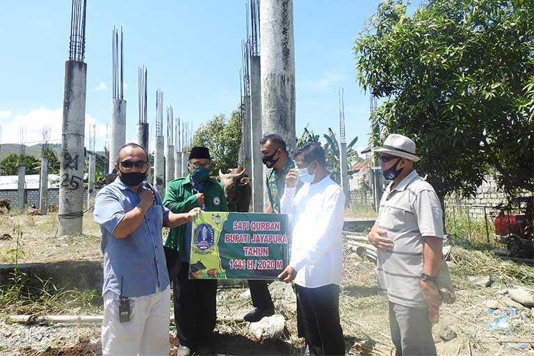 Wabup Jayapura Serahkan Bantuan Hewan Qurban