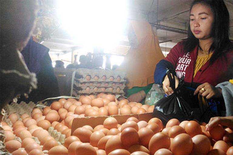 Harga Telur di Mimika Melonjak